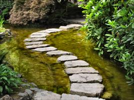 Camino en agua jardín Paisajismo VerdeConsciente