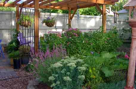 Jardín, paisajismo VerdeConsciente