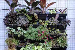 jardin vertical Paisajismo Verde Consciente