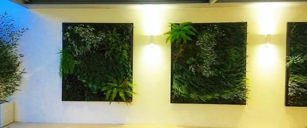 Diseño jardines, estudio de paisajismo Verde Consciente